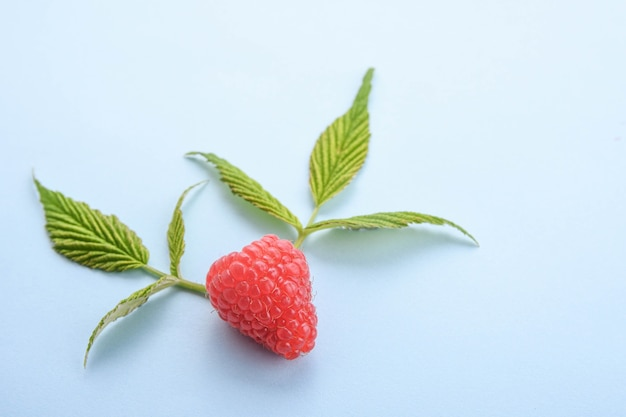 Ripe raspberries with green leaf on blue background. top view.