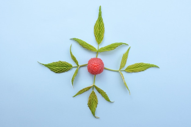 青い背景に緑の葉と熟したラズベリー。上面図。