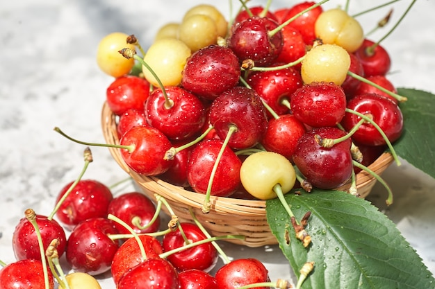 Спелые красные и желтые вишни в миске на сером фоне