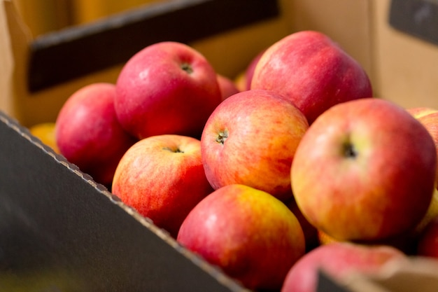 Ripe red apples in cardboard boxes.
