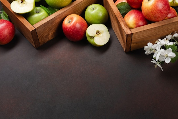 Ripe red and green apples in wooden box with branch of white flowers on a rusty background. top view with space for your text.