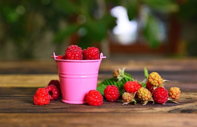 Ripe red raspberry in a pink metal bucket