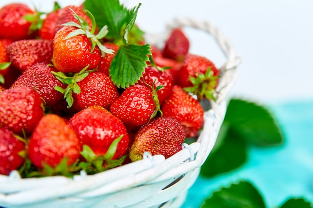 Ripe red strawberries in white basket.