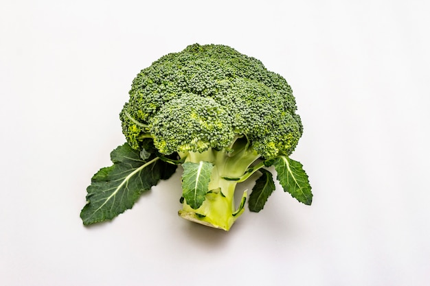 Ripe single broccoli. fresh whole head of cabbage, green leaves.