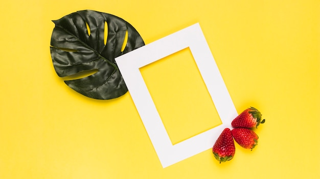 Ripe strawberry on white frame with monstera leaf