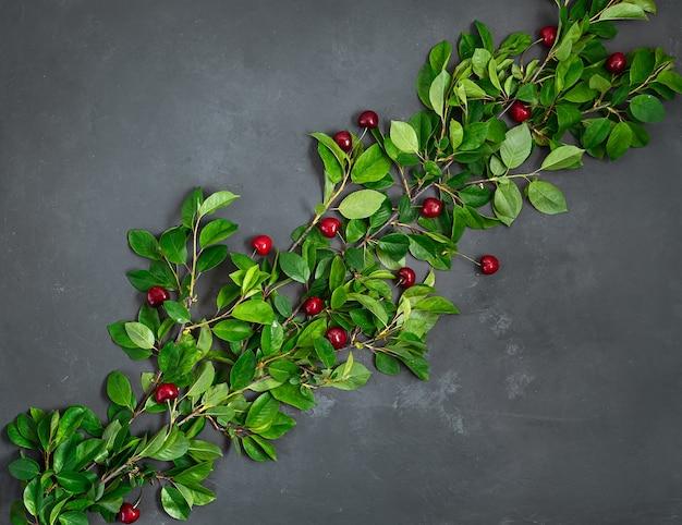 熟した甘いチェリーと濃い灰色の背景に緑の葉