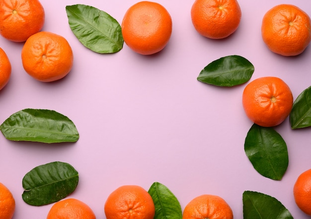 Ripe tangerines and green leaves on a purple background, copy space