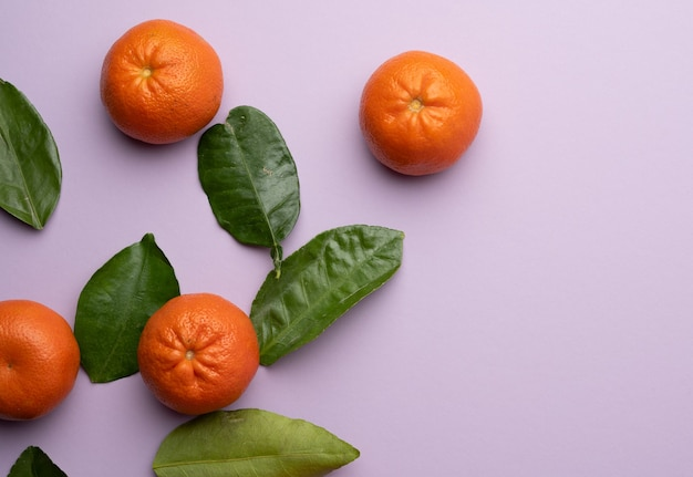 Ripe tangerines and green leaves on a purple background, top view, copy space