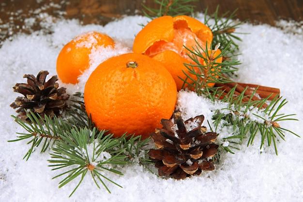雪の中でモミの枝を持つ熟したみかんがクローズアップ