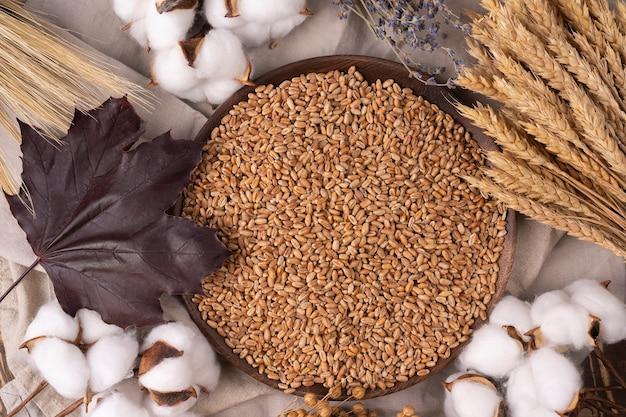 나무 접시에 잘 익은 밀 곡물과 밀 귀, 수확 코토가 있는 상위 뷰 구성