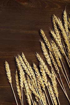 ダークブラウンの木の背景に熟した小麦収穫時期小麦のスパイクがクローズアップ