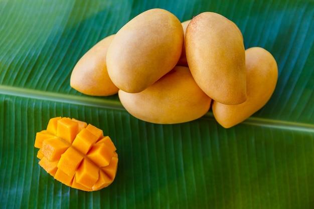 바나나 잎에 익은 노란 망고