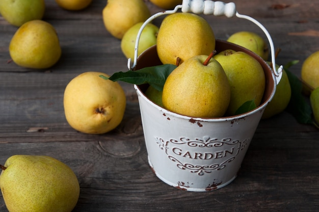 Ripe yellow pears are scattered on the table, some of them in a metal bucket white