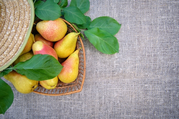 熟した黄赤梨と黄麻布の上の麦わら帽子、上面図、コピースペース付き