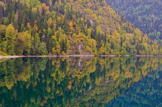小さなritsa湖の素晴らしい自然風景を見る