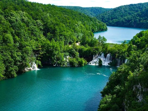 크로아티아 플리트 비체 호수 국립 공원의 강과 나무