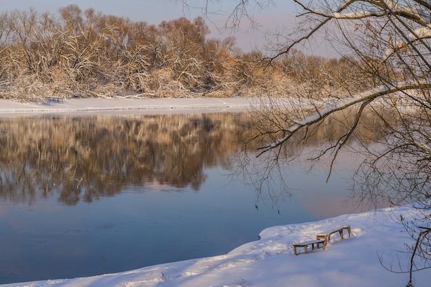 川と木々 Premium写真
