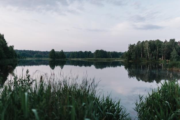 강둑. 호수를 배경으로 안개입니다. 안개 낀 아침입니다.