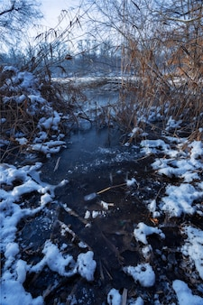 River covered with snow and wild plants in maksimir, zagreb, croatia
