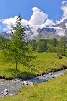 빙하와 고산 프랑스 국립 공원을 가로 질러 흐르는 강