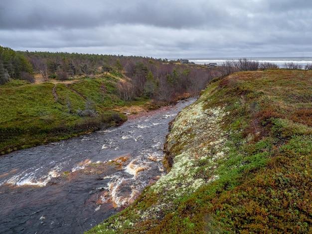 白海に流れ込む川。崖の間の川、北の野生の自然。ロシア。