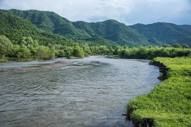 春に森に流れ込む川