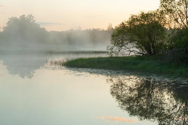 霧に覆われた朝の川