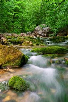 山の中の川