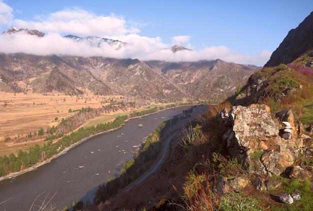Река в горах цветущая трава на скалах и камнях берега, покрытые деревьями