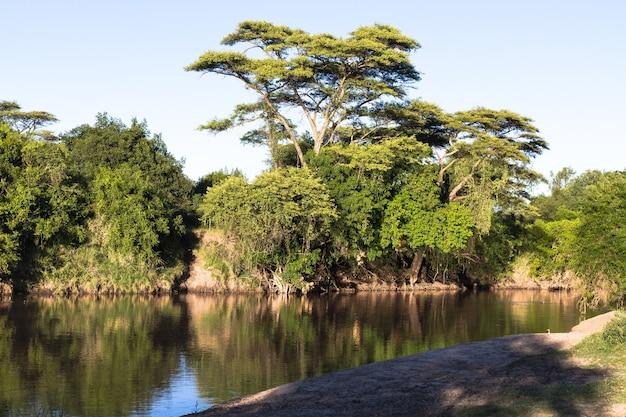 Речной пейзаж. река грумети. серенгети, танзанья