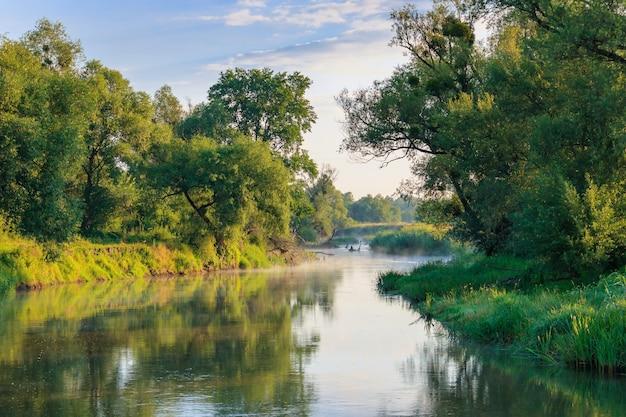 화창한 여름 아침에 해안에 푸른 나무의 배경에 강 풍경