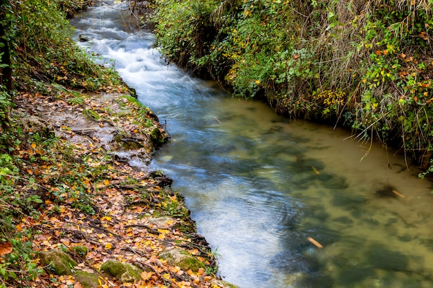 マジャセイト川