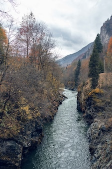 River between mountains autumn forest travel fresh air