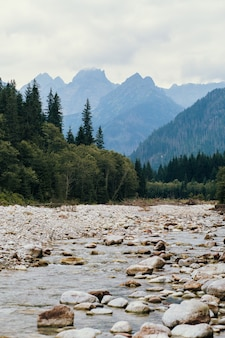 River and mountains, sea eye, poland, zakopane