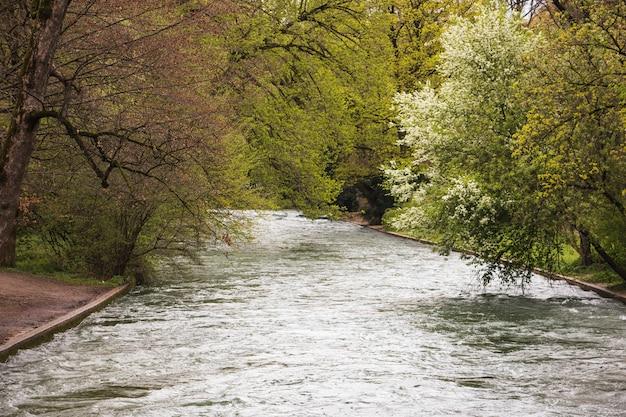 公園を流れる川