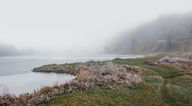 最初の凍結時の川岸。霧のかかった朝の川の近くの草の霜