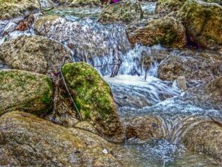 River in spring, spring