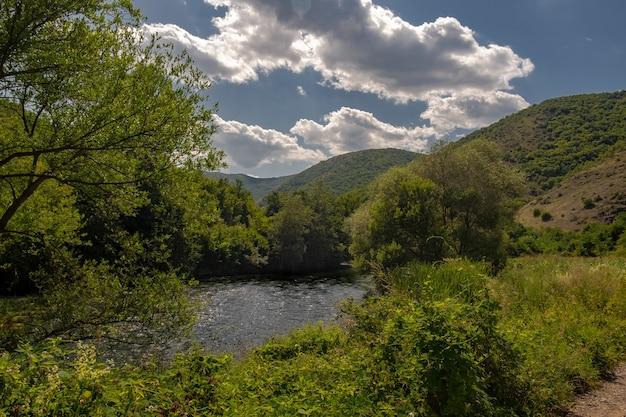 日光と青い空の下で緑に覆われた丘に囲まれた川