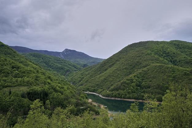 曇り空の下の森に覆われた山々に囲まれた川
