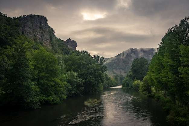 日光と曇り空の下、苔と森に覆われた岩に囲まれた川