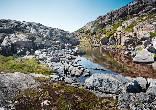 グリーンランドの日光の下でコケに覆われた岩に囲まれた川