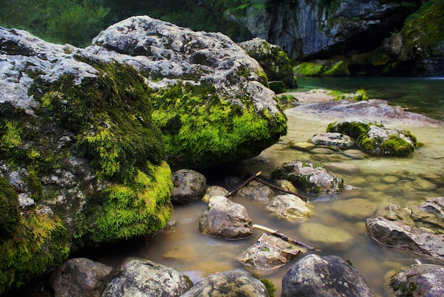 River surrounded by rocks covered in mosses under the sunlight in bovec in slovenia