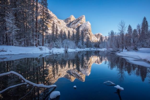 겨울 동안 눈으로 덮여 나무에 둘러싸인 강