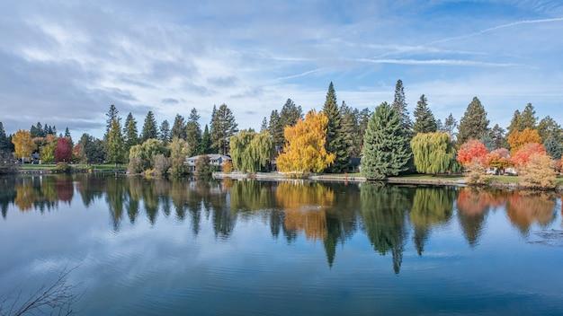 日中は秋に花に囲まれた川