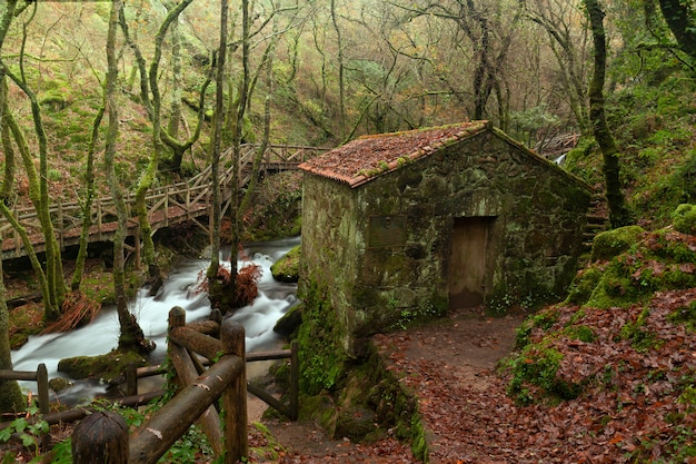 The river valga is a river of the province of pontevedra, galicia, spain.