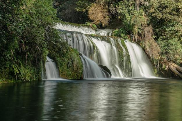 Речная вода быстро течет через водопад в глуши густого пышного кустарника в новой зеландии.