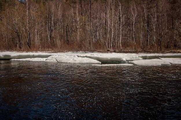 Река со льдом весной с деревьями