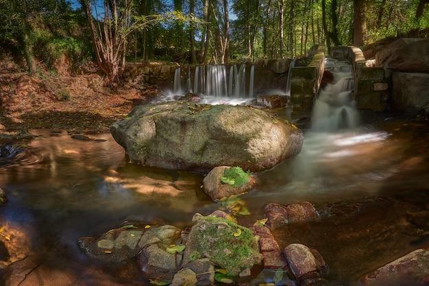 햇빛 아래 숲에서 바위와 녹지로 둘러싸인 긴 노출의 강