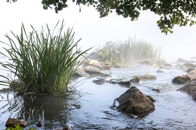 早朝の霧の中で急流のある川。