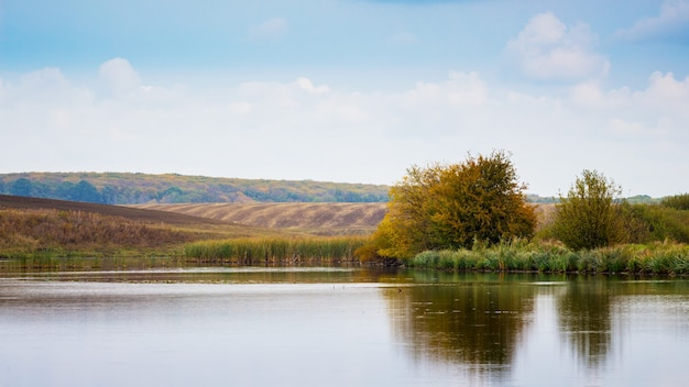木々が上陸し、遠くに野原があり、木々が澄んだ川の水に映る川